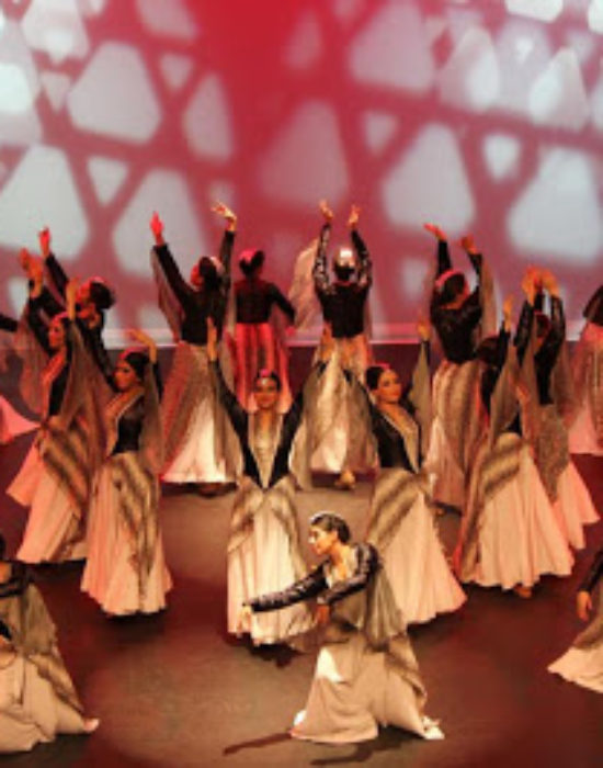 My Armenian Traditional Dance Concert